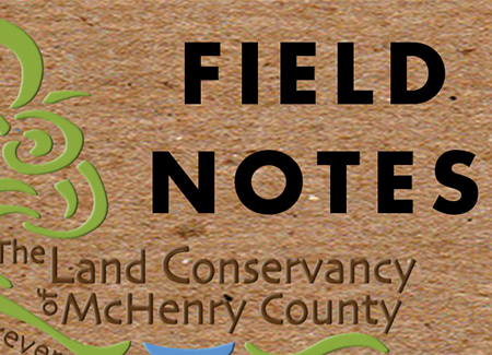 THE LAND CONSERVANCY